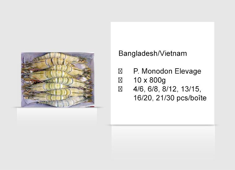 Bangladesh/Vietnam