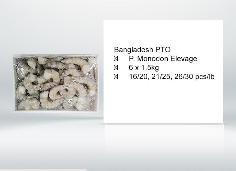  P. Monodon Elevage