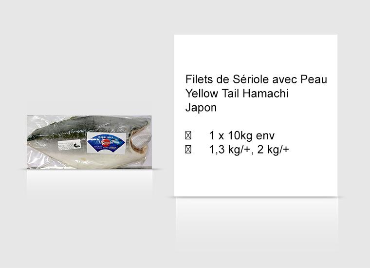 Filets de Sériole avec Peau Japon Yellow Tail Hamachi