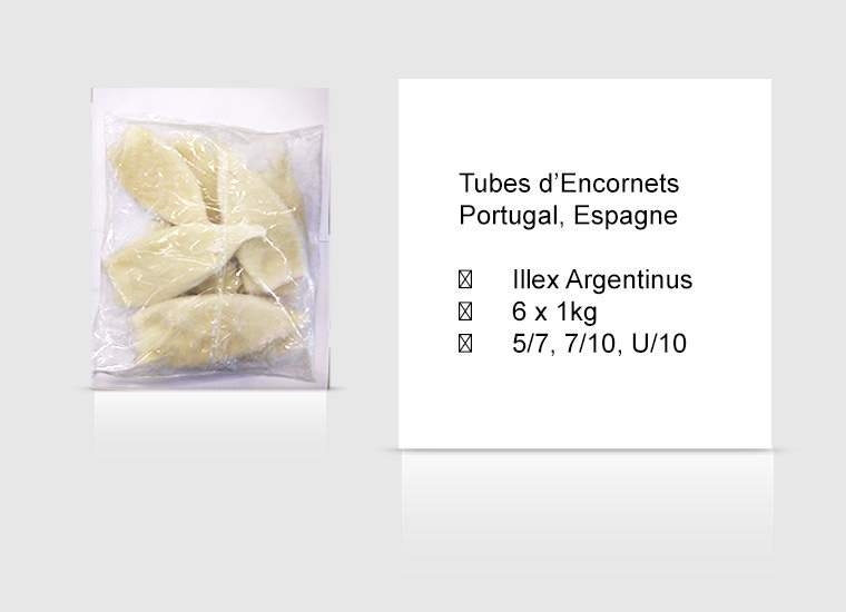Tubes d'Encornets Portugal, Espagne